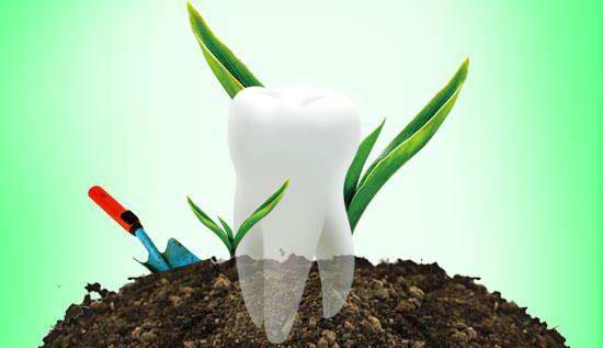 上海做种植牙使用寿命是多久